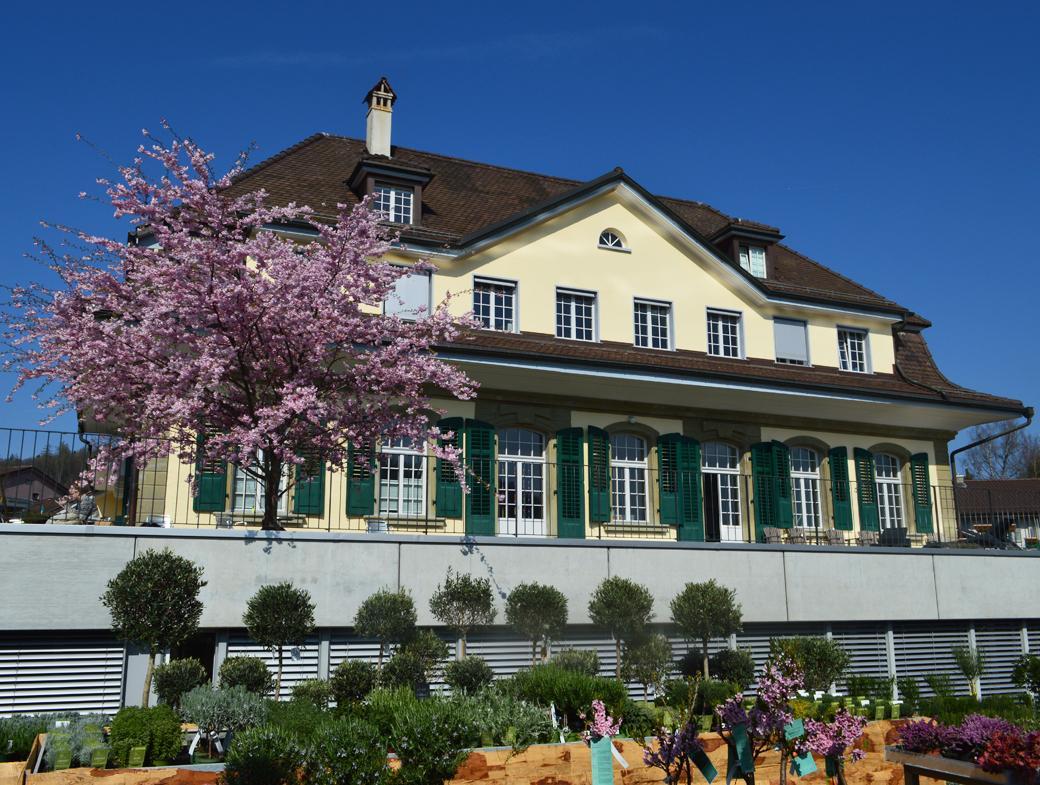 Le Foyer et les Ateliers du Buchseegut, à Köniz, testent les Lignes directrices pour le travail social chrétien dans le cadre d'un projet-pilote.