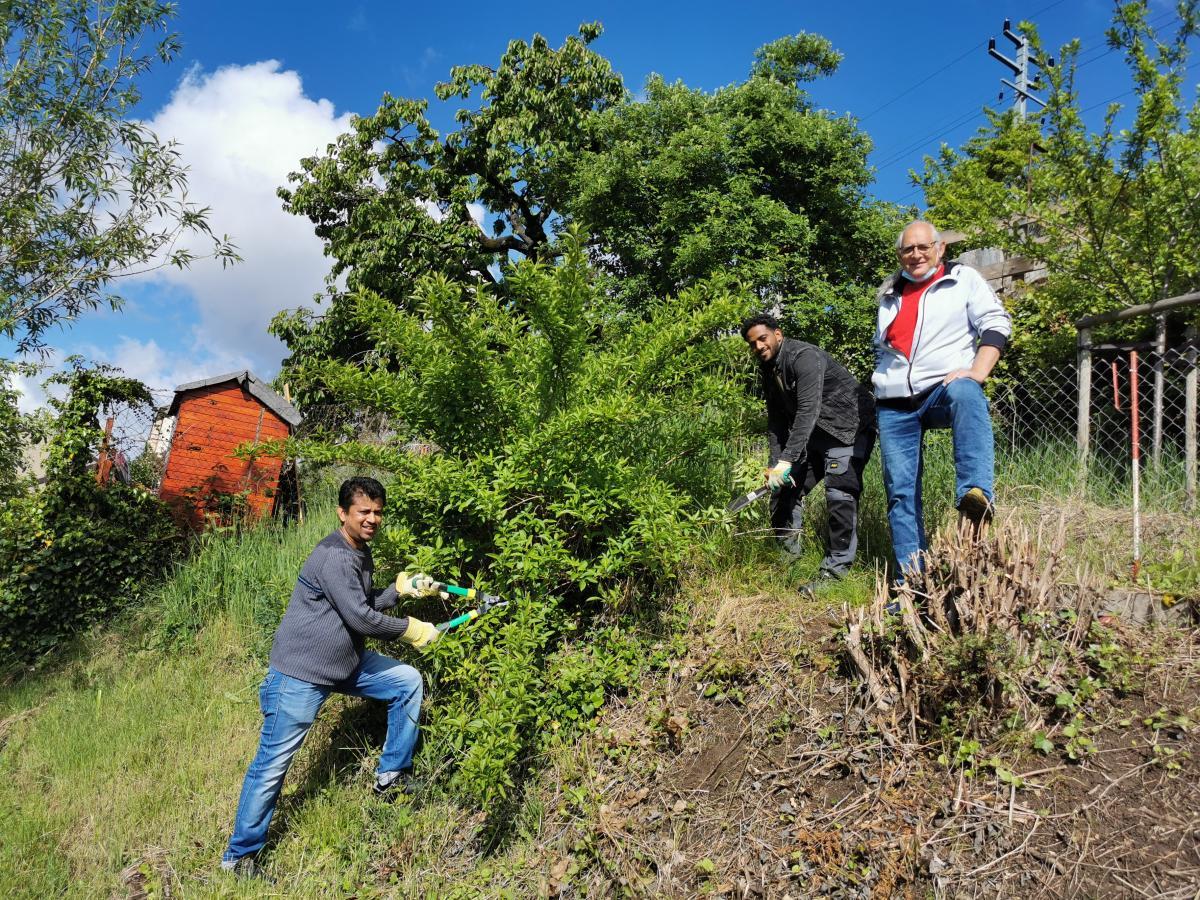 Le jardinage en échange de l'aide ponctuelle - c'est du Win-Win